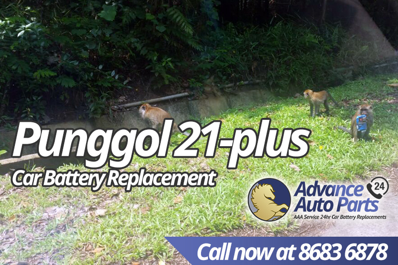 Car Battery Replacement Punggol 21-plus